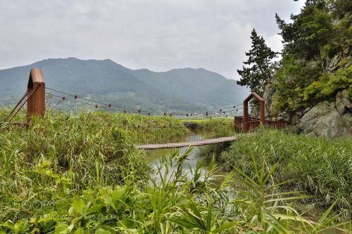 Summer Excursion I by visbimmer  Bridge Korea 2015 Rural Exploration Summer Excursion Suncheon Bay Ecological Park Salt Swamp visbimm