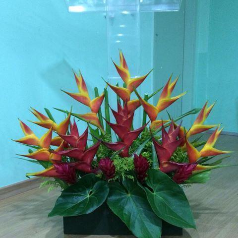 Arranjo Pulpito Festa Flores Producaopropria Arranjofloral