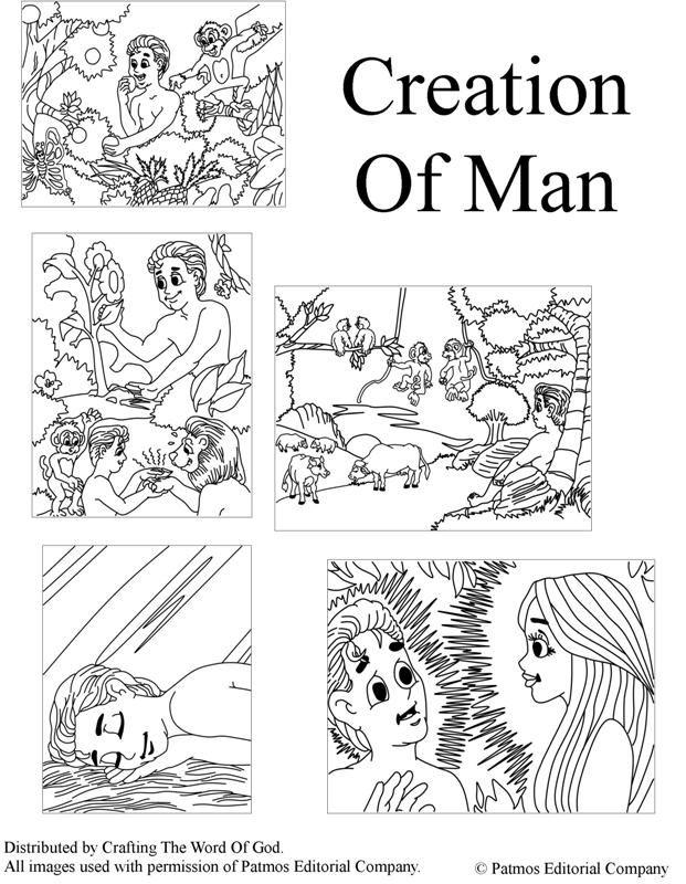 La Creacion Del Hombre- Paginas De Colorear | manualidades iglesia ...