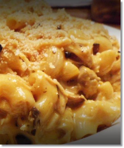 recipe: chicken and macaroni recipes [31]