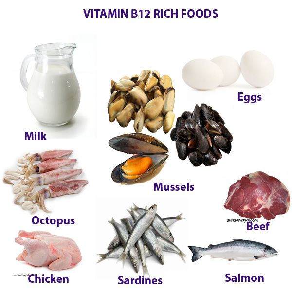 which food is rich of vitamin b12
