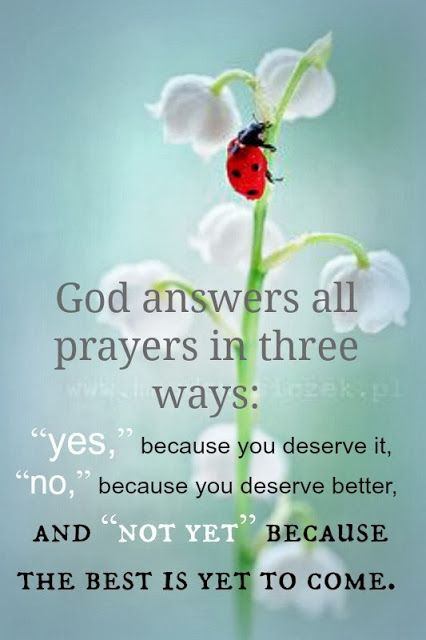 """quote by sharifahnor god answers all prayers in three ways """"yes"""