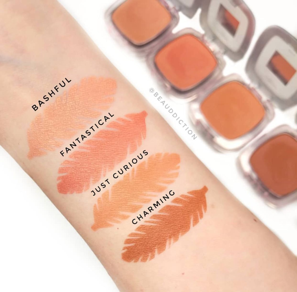 1712bd1ad88 L'Oréal Paradise Enchanted Blushes | Makeup & Skincare Products in ...