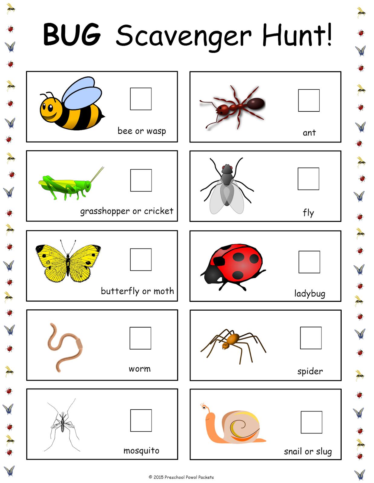 Bug Scavenger Hunt Free PreschoolPreschool PrintablesOutdoor Preschool ActivitiesCamping Theme