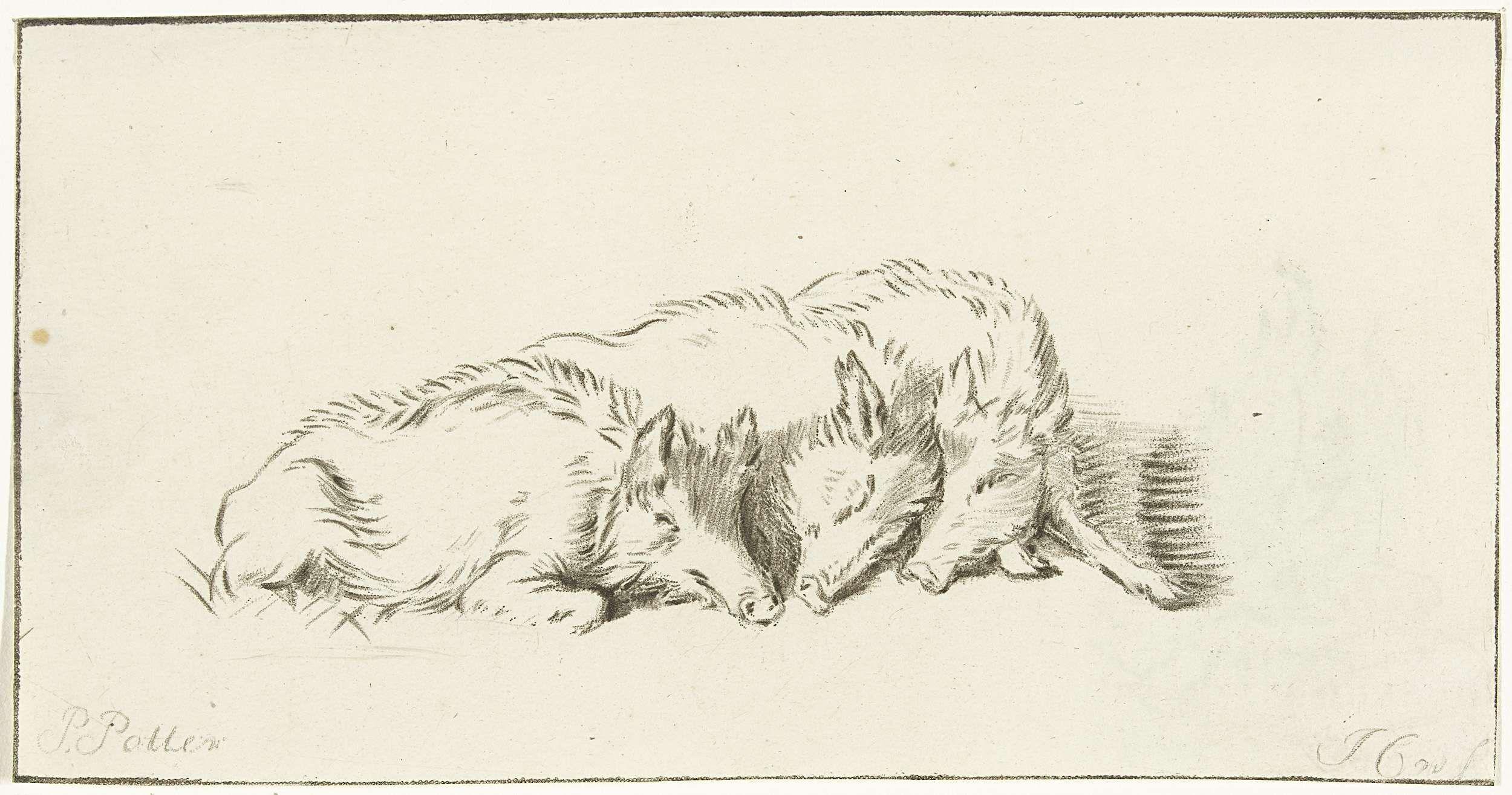 Jurriaan Cootwijck | Drie wilde zwijnen, Jurriaan Cootwijck, 1724 - 1798 | Drie wilden zwijnen liggen tegen elkaar