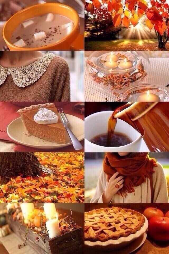 I can't help it. I've fallen in love with fall.