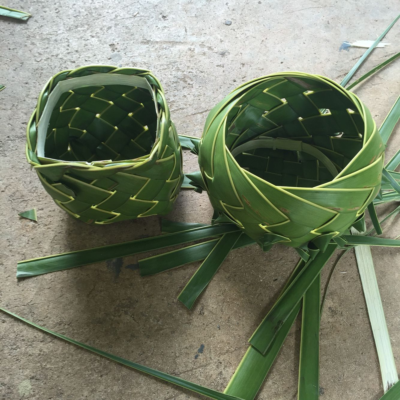 Two Palm Frond Baskets 12 Leaves Each One Round One Square