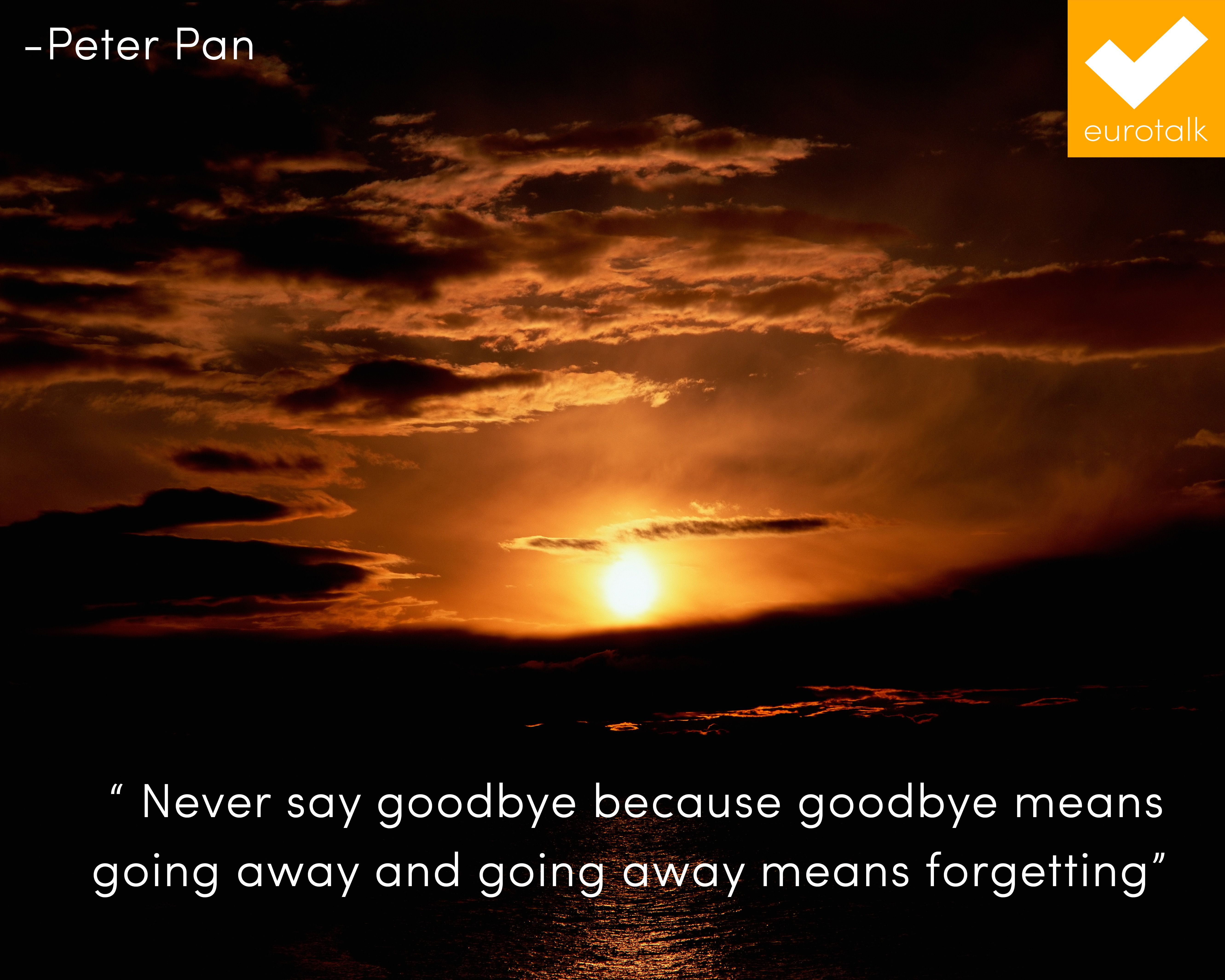 Quotes Graduation Party Pinterest Quotes Saying Goodbye And