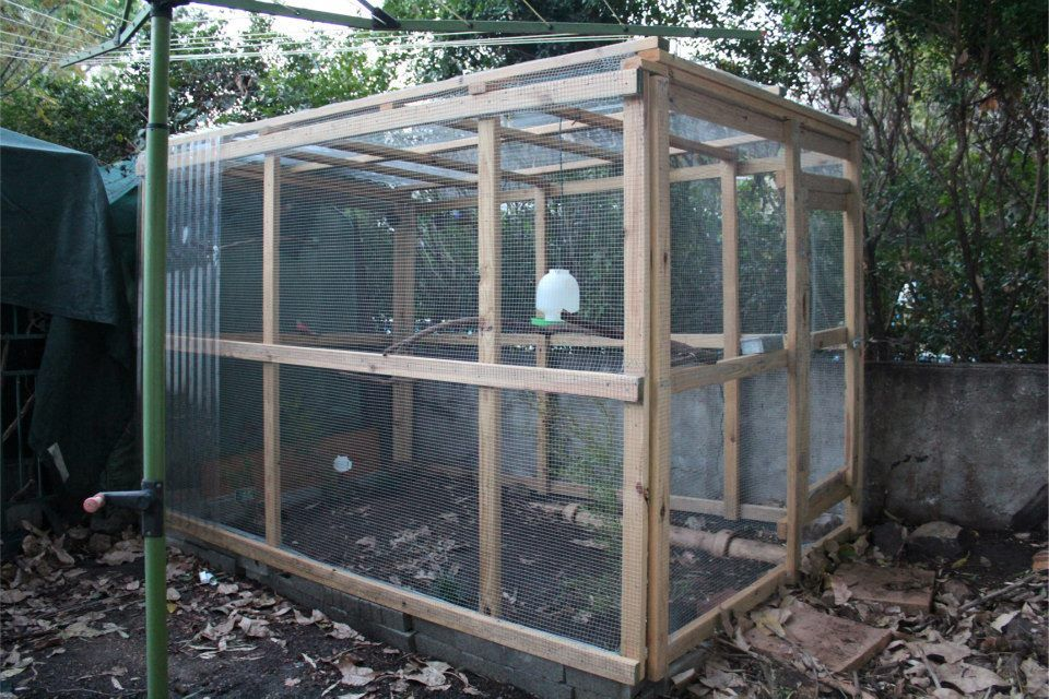 diy aviary project outside aviary diy bird cage bird. Black Bedroom Furniture Sets. Home Design Ideas
