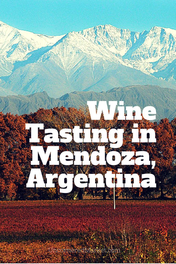 Wine Tasting In Mendoza Argentina Going Beyond Malbec And Loving