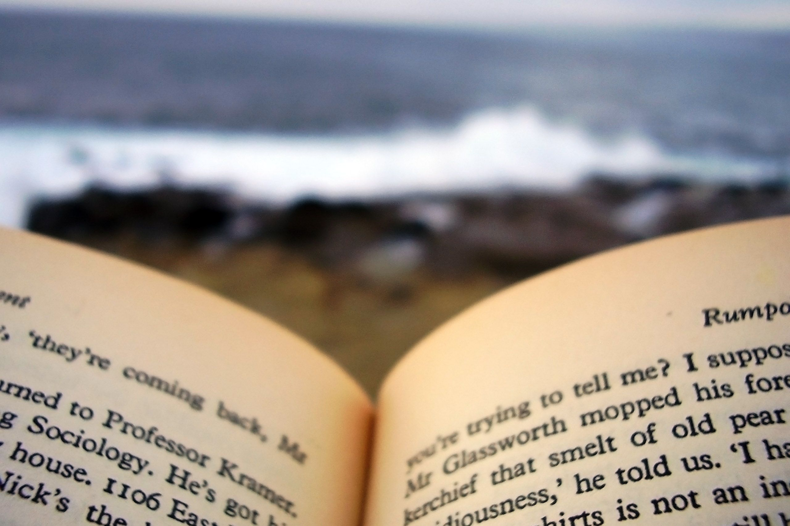 0 reading by the sea