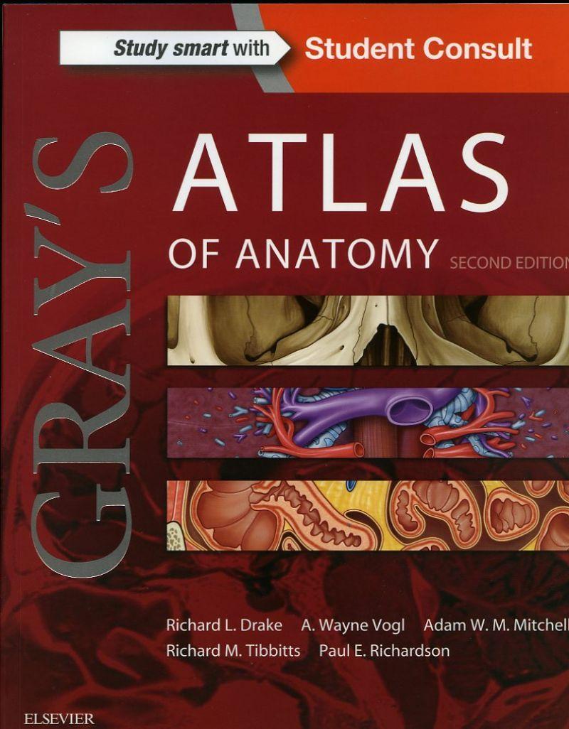 Gray\'s Atlas of Anatomy, 2nd Ed | Anatomy textbooks | Pinterest ...