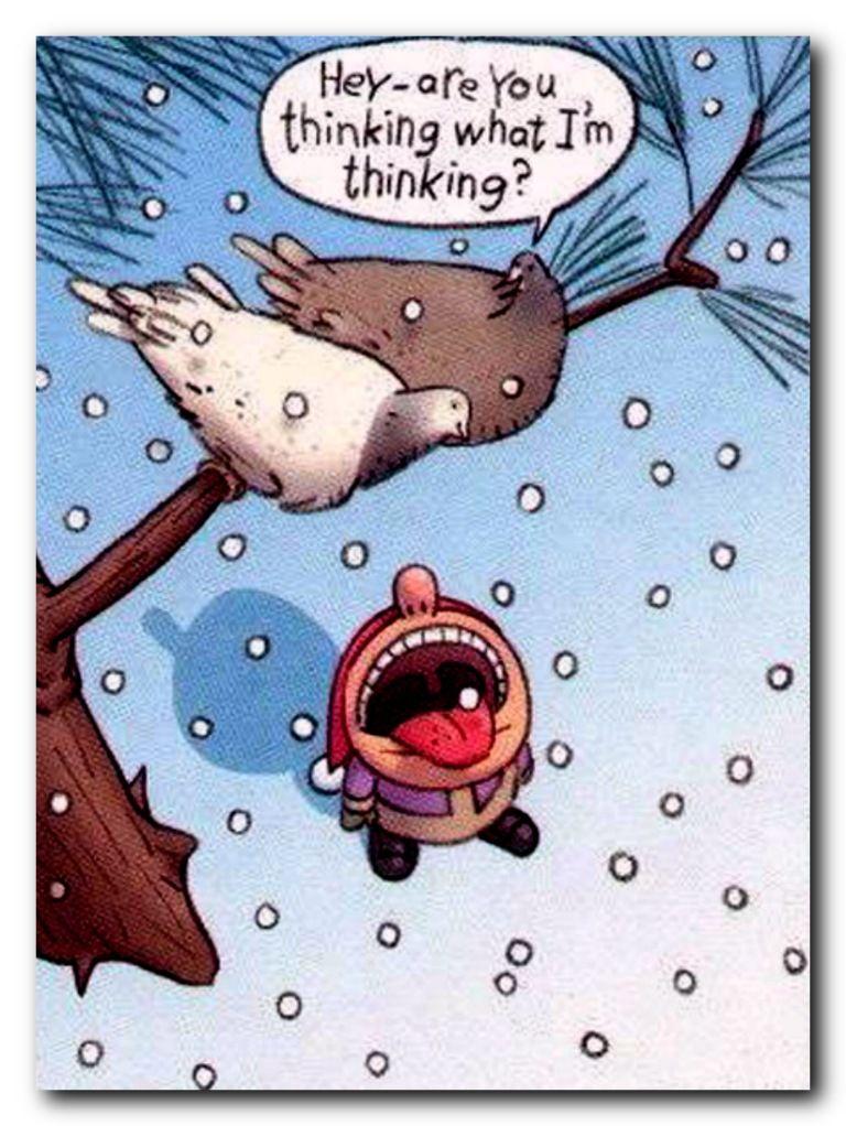 winter jokes Google Search Funny christmas cartoons