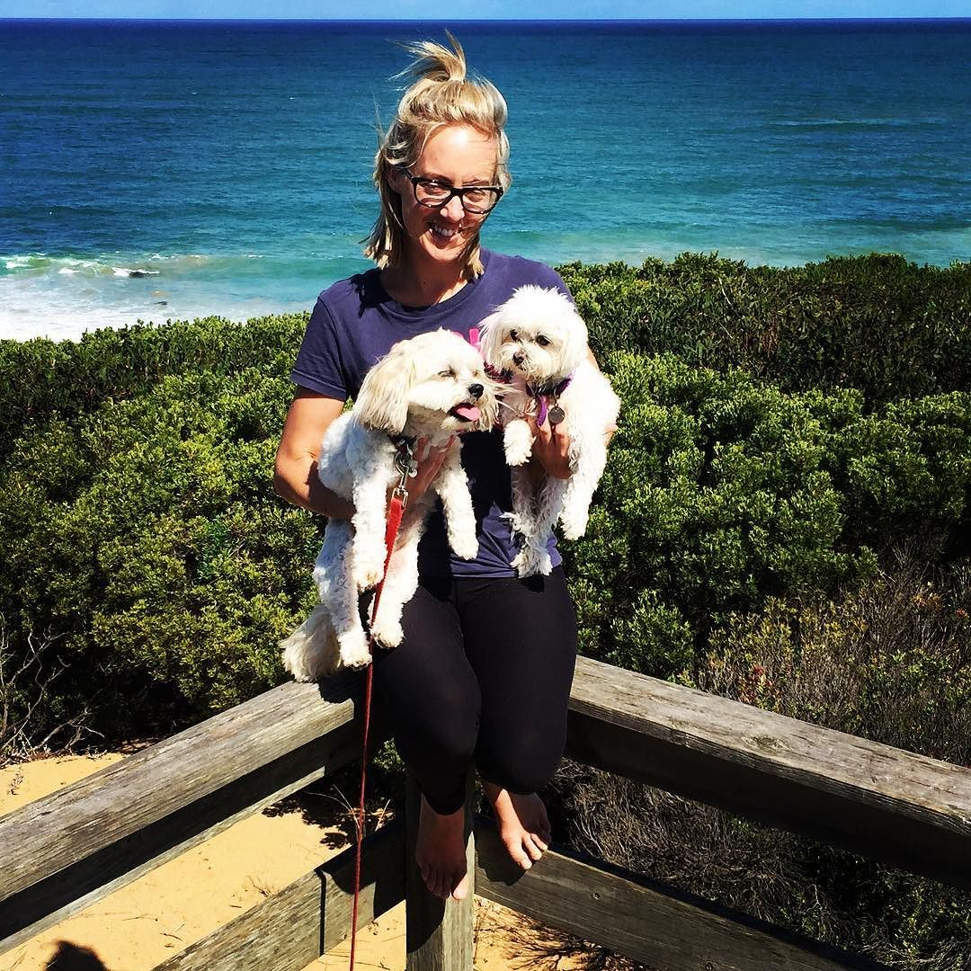 Puppies Maltese Warrnambool Beach Coast Walks Barefoot Dog