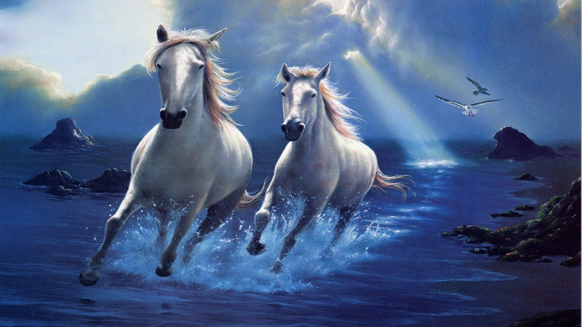 Image Result For Horse Hd Wallpapers 1920x1080 Diamond Painting Horses White Horses