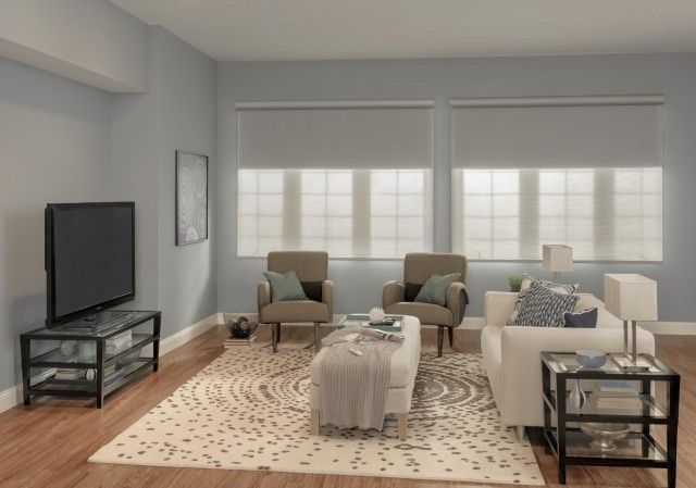 Solar and Roller Dual Shades: Dual Shades with Motorized Lift and ...