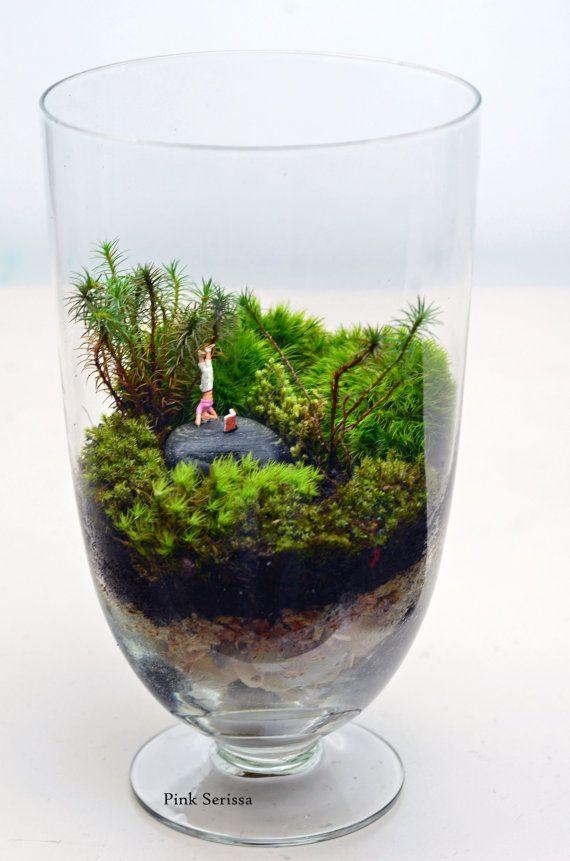 cette saison des f tes donner un peu de zen et de paix avec ce terrarium mignonne moss. Black Bedroom Furniture Sets. Home Design Ideas