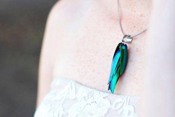 Collana ala reale coleottero - elitre le ali di coleottero, collana in acciaio inossidabile, collana scarabeo, scarabeo gioielli tassidermia...