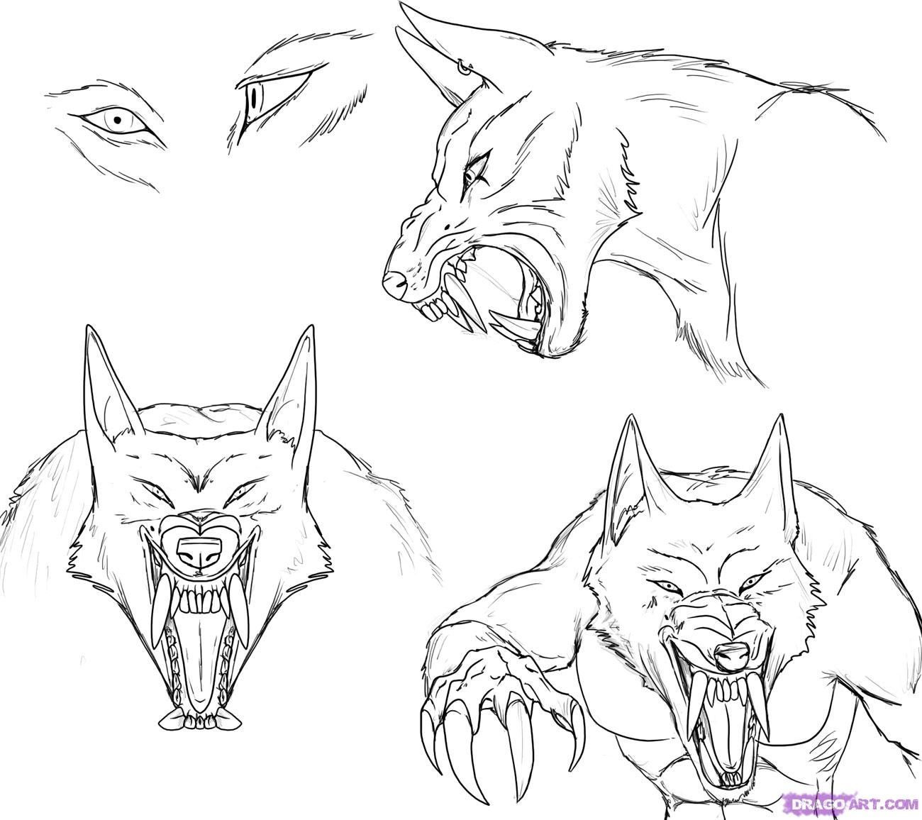 How To Draw A Werewolf Face, Head, Eyes Step 6