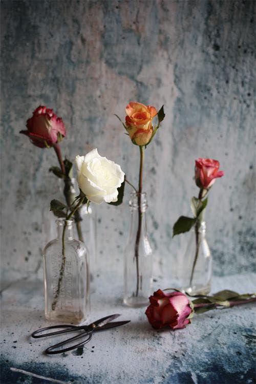 ChingYang Tung   Beautiful flowers, Pretty flowers, Flower arrangements