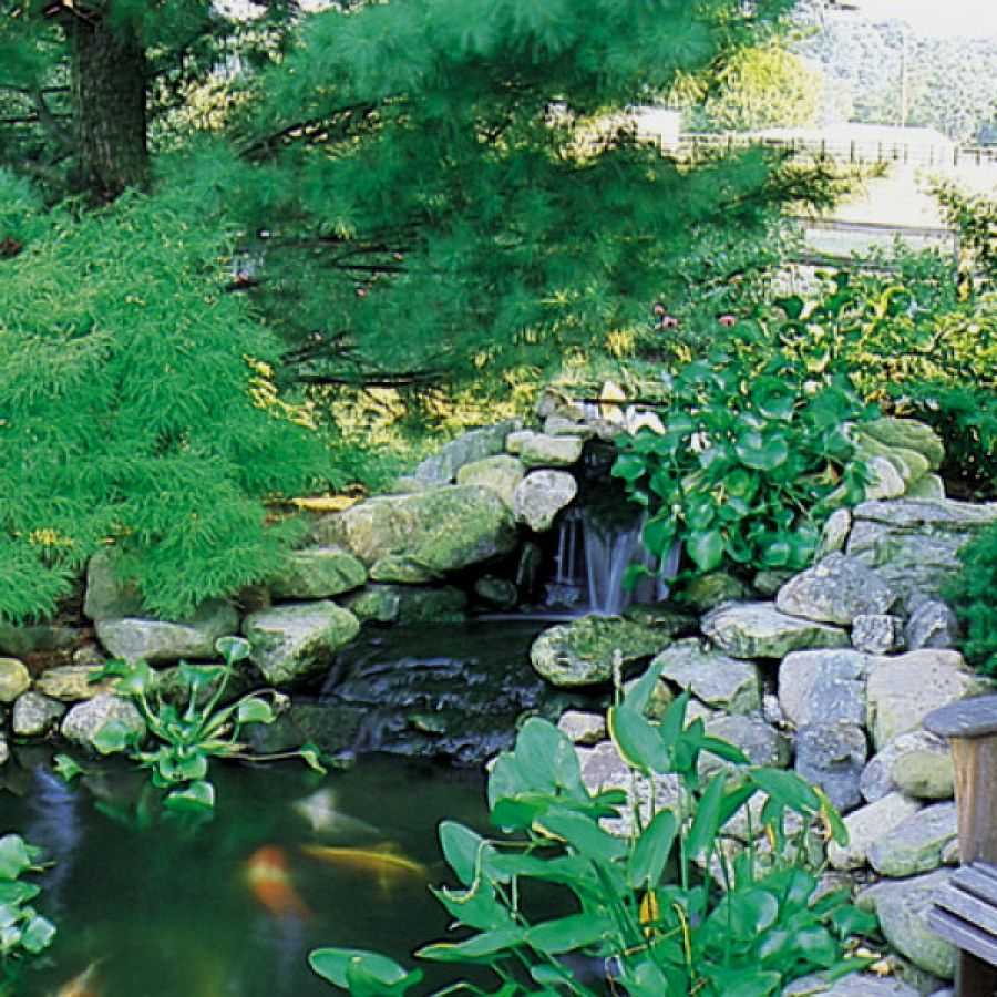 50 Easy DIY Koi Pond Designs You Can Build Yourself To ...