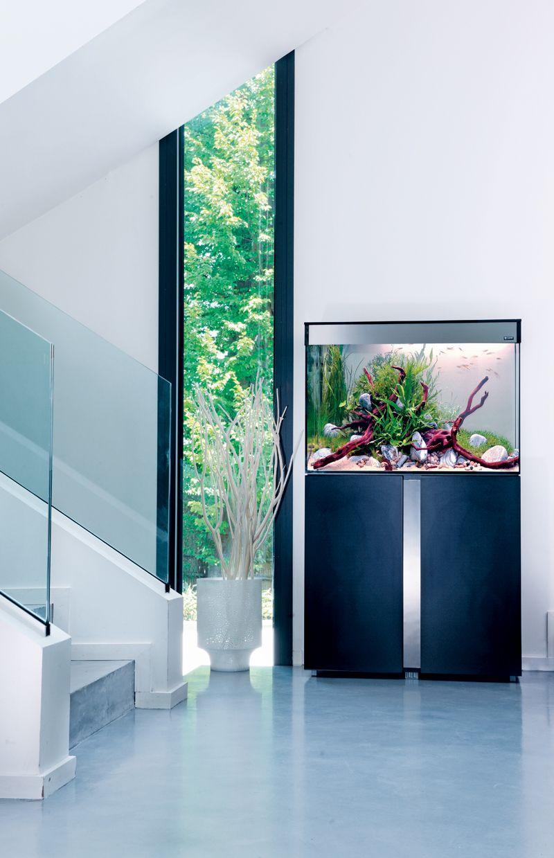 Home Aquarium Design Ideas: Voyez La Vie En Grand Avec Votre Aquarium