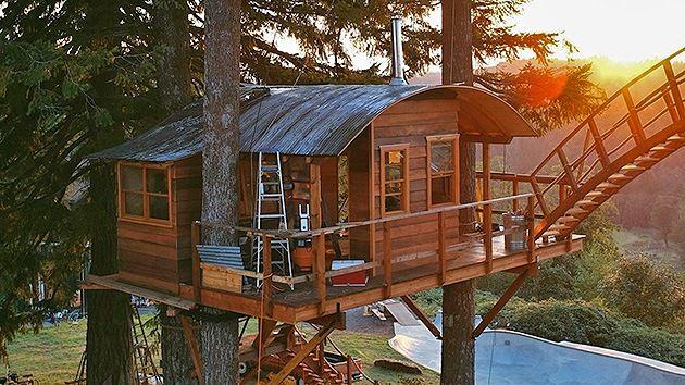Fotos Una casa-árbol para vivir como Tarzán - RT casa del árbol - casas en arboles