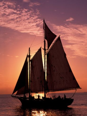 Sailboat at Sunset, Key West's Old Town Harbour, Florida Keys, Florida, USA Photographic Print | By Greg Johnston