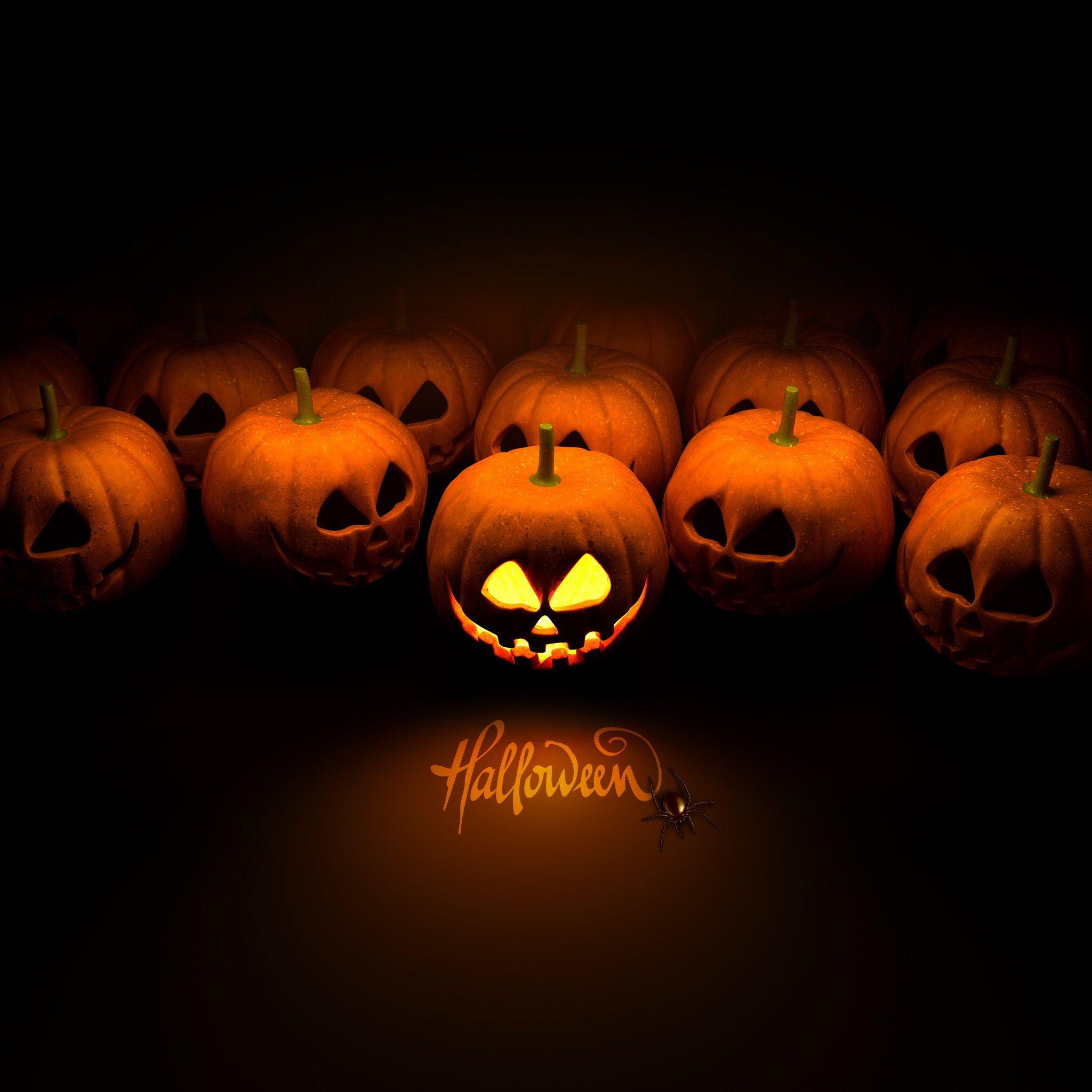 Popular Wallpaper Halloween Iphone 4s - ef7585f573419cb63335f9db6c13e765  Image_173894.jpg