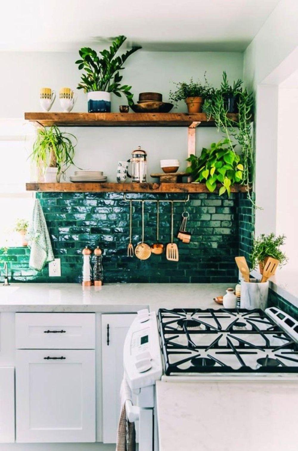 Plante intérieur dans la cuisine : inspiration déco en photos