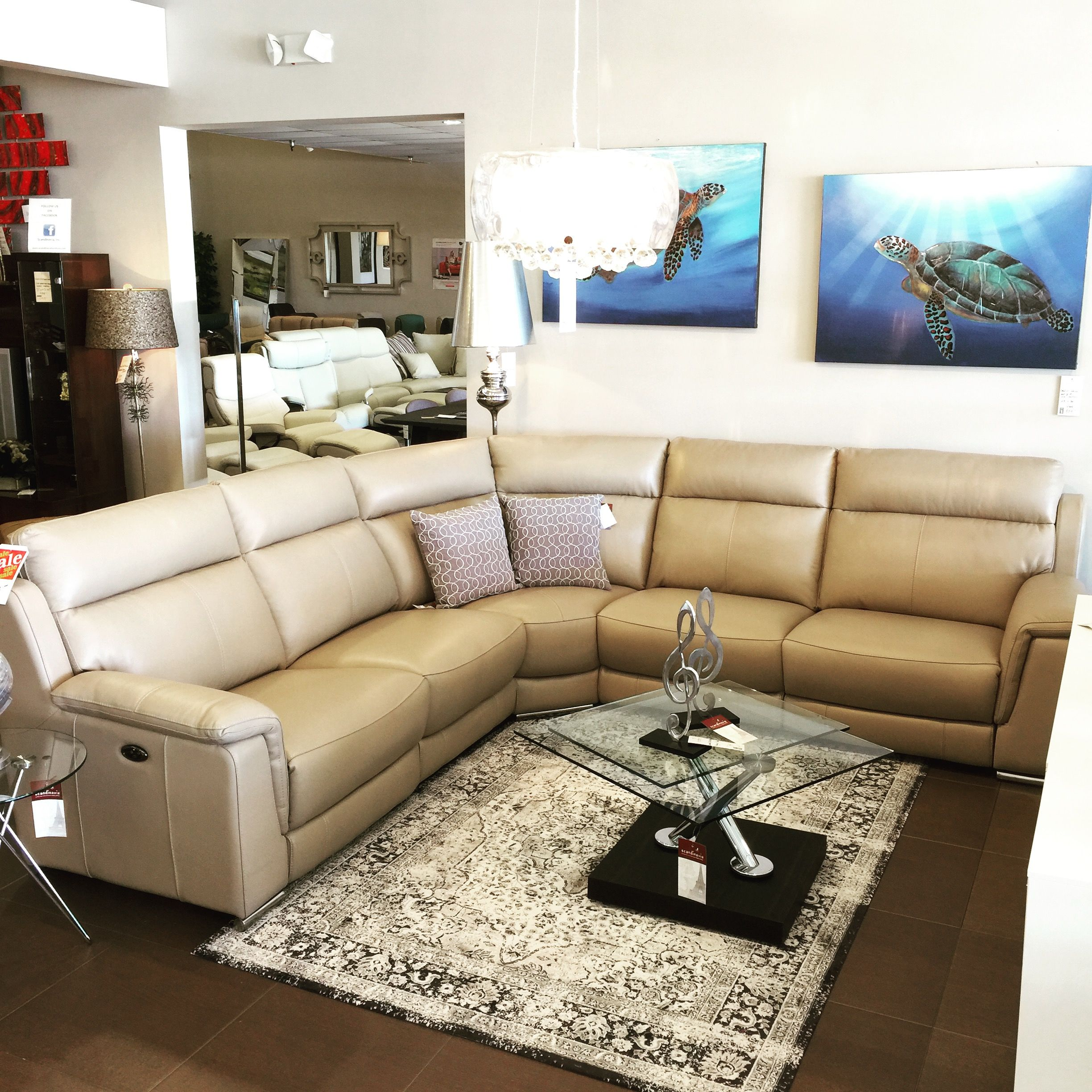 Htl Relax Sectional Leather Reclining