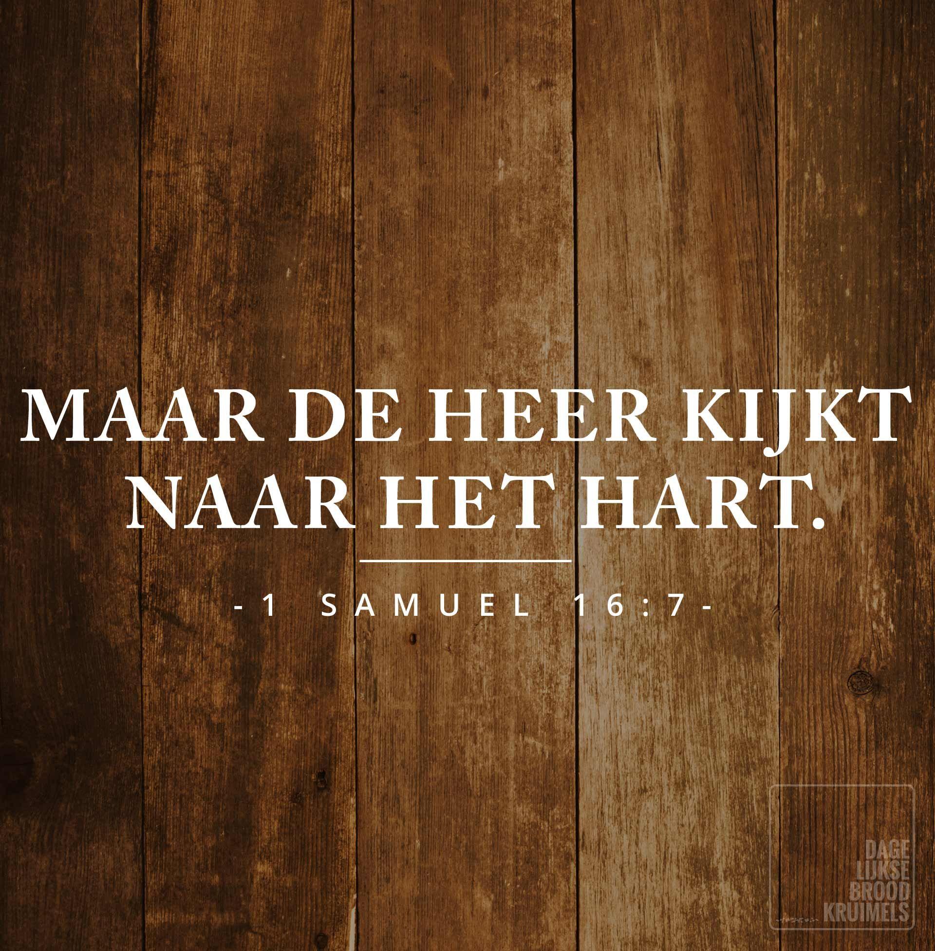 Citaten Geloof : Samuël dagelijksebroodkruimels de bijbel