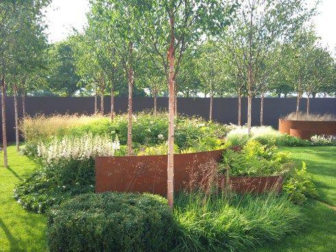 Panicum Virgatum Rehbraun Garden Design Eye Australian Garden Design Landscape Design Garden Architecture