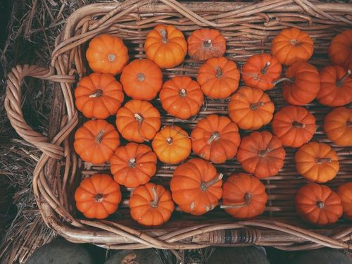 COZY FALL & HALLOWEEN : Photo | Autumn | Pinterest | Autumn ...