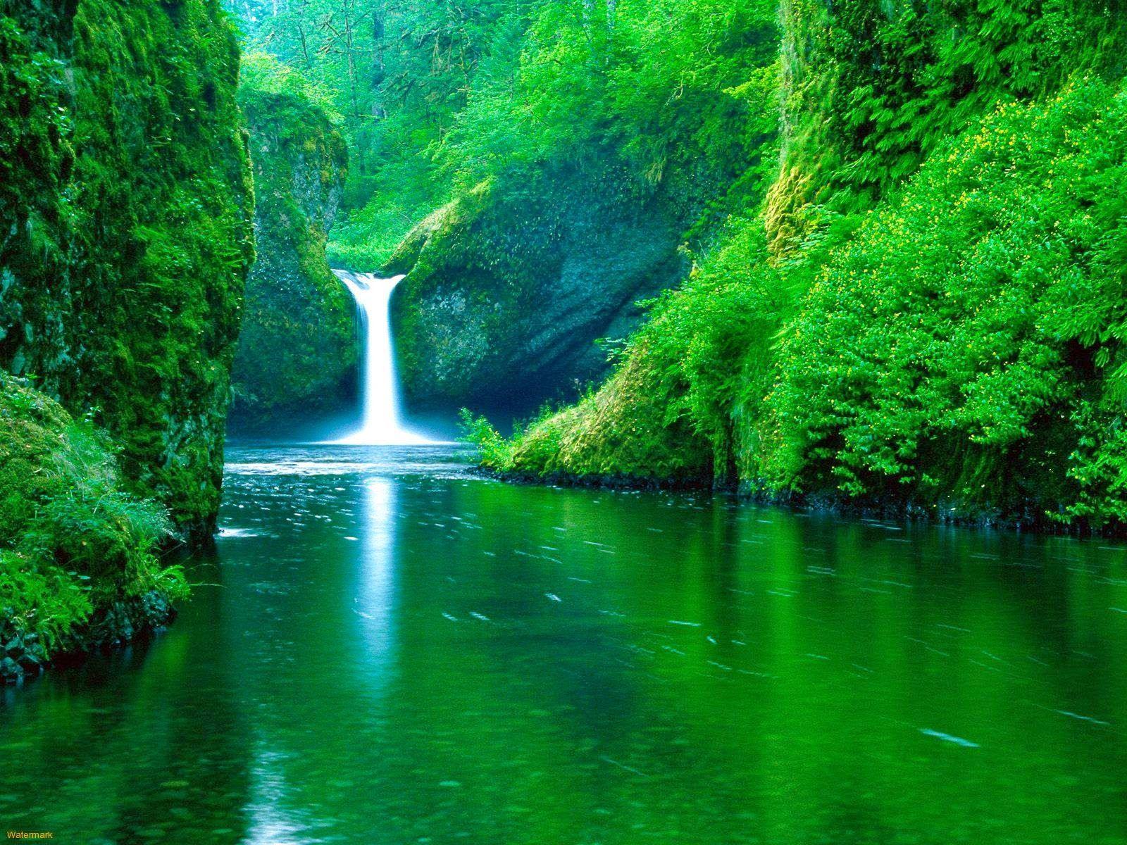 Kumpulan Gambar Air Terjun Tercantik Di Dunia Wallpaper Background Images Nature Pictures Nature Wallpaper