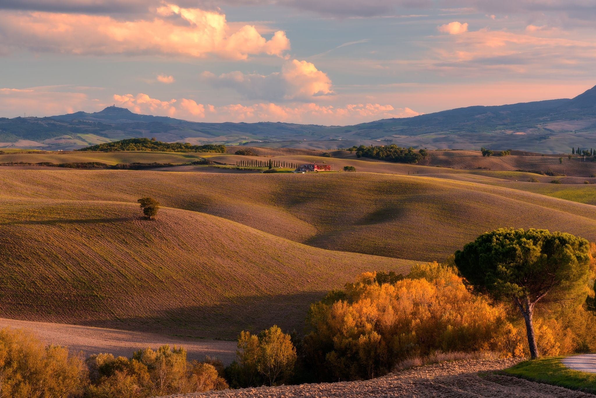 Val d'Orcia in Autumn - null