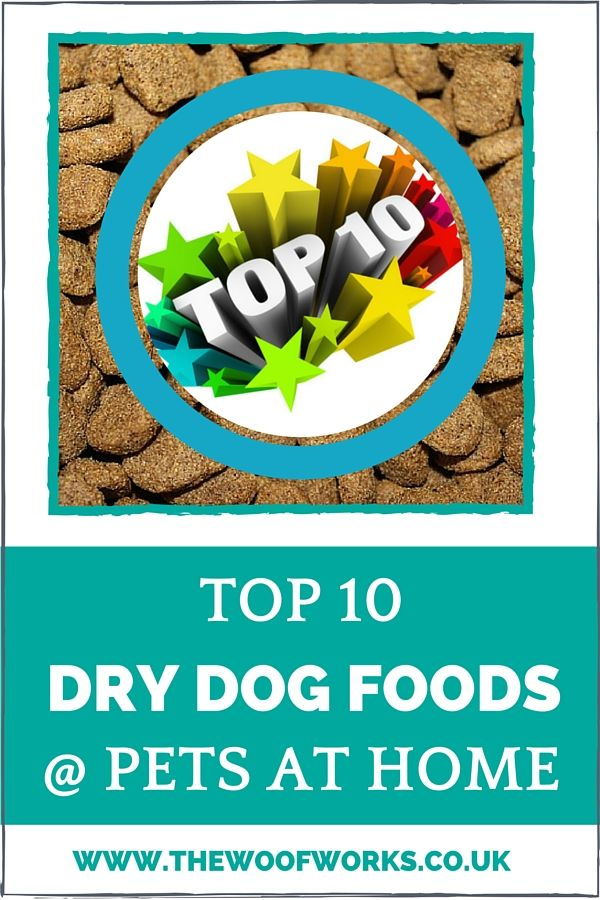 Pets At Home Dog Food How To Choose A Commercial Dog Food Dog