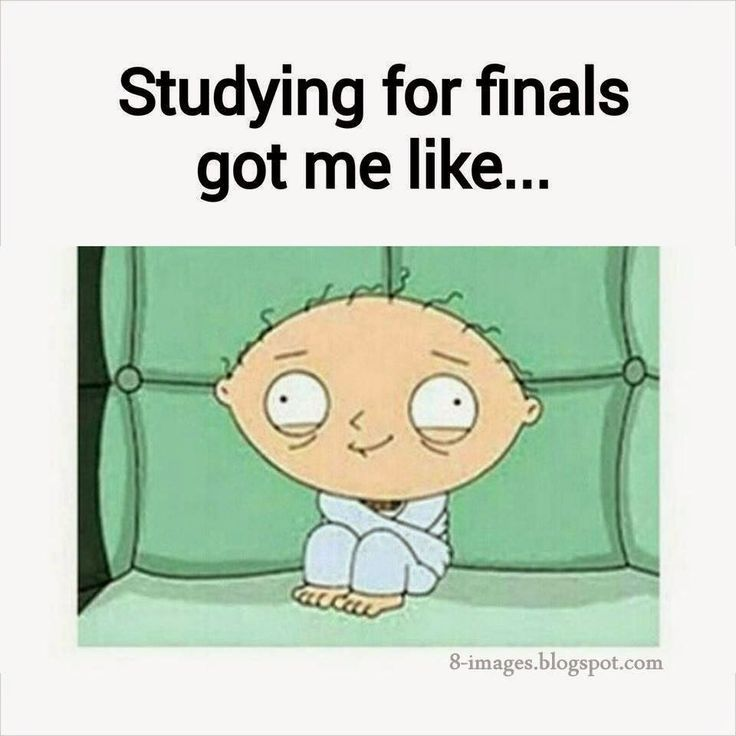 The Ultimate Study Playlist Blossom Into Wellness Funny Memes About Girls Fun Quotes Funny Love Quotes Funny