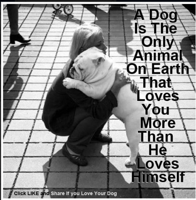 Something to be said for unconditional love. I love my dog ~