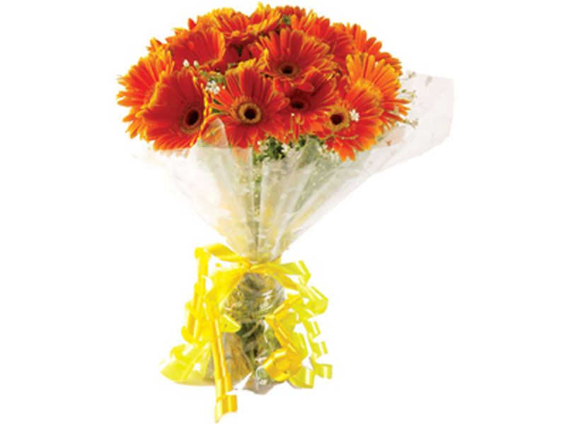 Hand Bunch Of 20 Bright Color Gerbera Flowers Flower Delivery Bunch Of Flowers