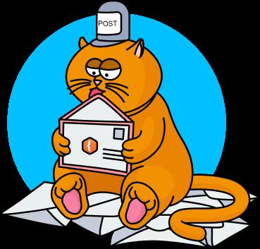 post-cat