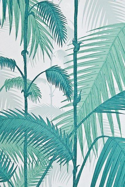 Palm jungle wallpaper ideas designs living room for Palm tree living room ideas