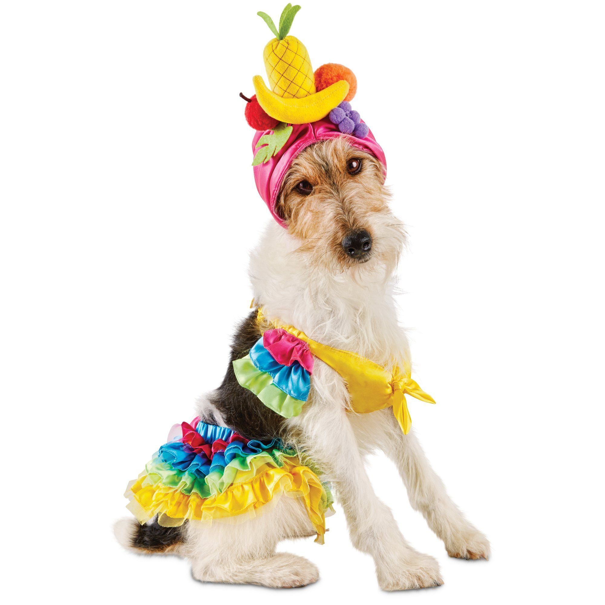 Halloween Bootique Carnival Pet Costume Dress Your Pup Or Cat To