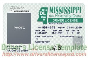 graphic regarding Printable Fake Ids identified as Mississippi Motorists License Mississippi Identity CARD Purchase