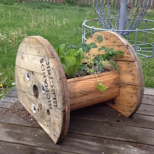 Do It Yourself Home Design: Wire Spool With Greens Planted In Center,
