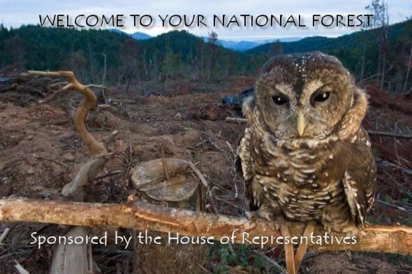 John Boehner Wants to Keep Our Forests From Burning Up By Cutting Them Down