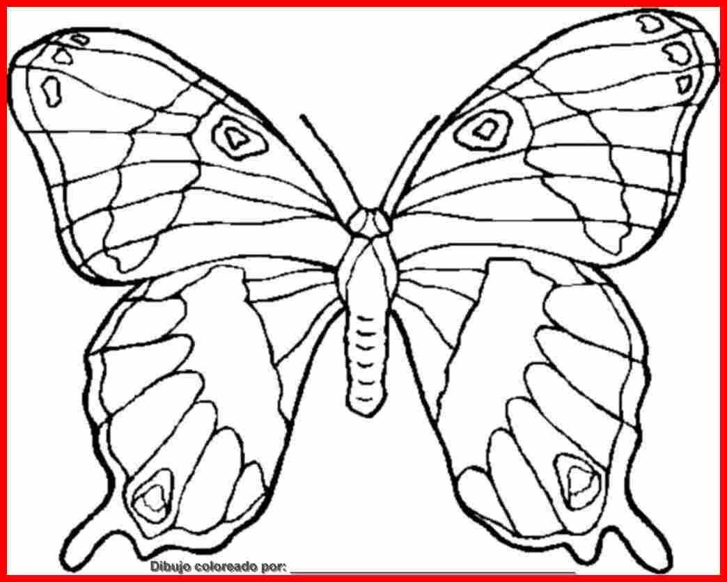 corazones con mariposas dibujos - Buscar con Google | hijos ...