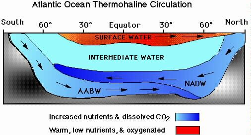 Each Water Mass Has Characteristics Determined By Conditions Of