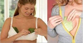 As mulheres estão colocando folhas de repolho no peito - o motivo você vai adorar saber! | Cura pela Natureza