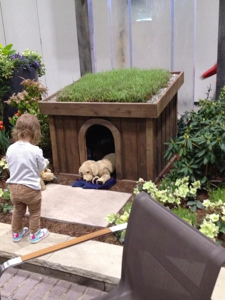 For Gavins Portion Of The Playground Keep Your Dog S House Cool By Giving It A Green Roof This One Was At Canada Blooms Dog House Pamper Pets Pet Clothes